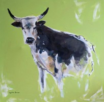 Nguni with Lime background