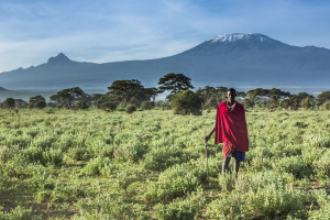 Maasai and the mountain 1